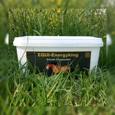 EQUI-Energyking Front